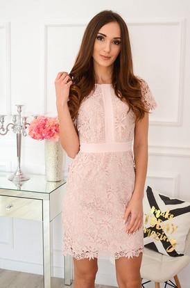 aaa74adc12 Elegancka sukienka koronkowa brudny róż Indigo New ...
